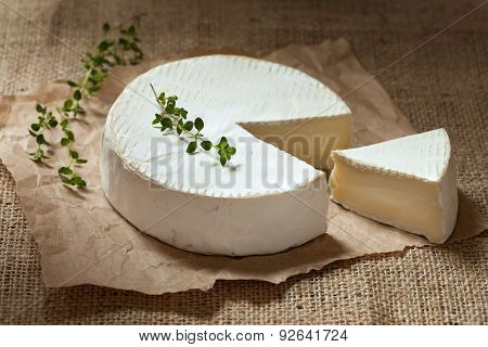 Sliced camembert cheese, creamy round traditional organic healthy French dairy gourmet food with thy