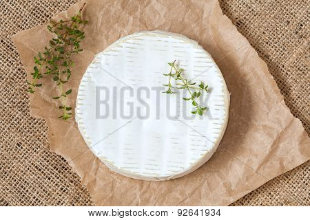 Camembert cheese traditional Normandy French gourmet round dairy product delicious food with thyme o