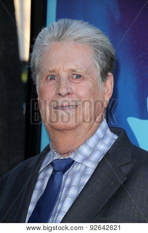 LOS ANGELES - JUN 2:  Brian Wilson at the