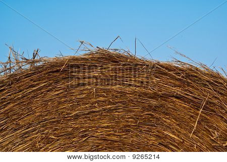 The Top Of A Rounded Hay Bale Against A Blue Sky