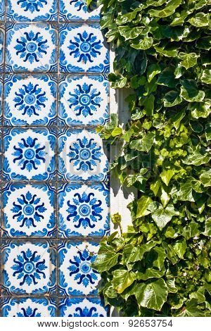 Azulejo Tiles And Green Leaves