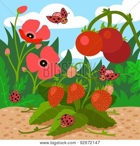 Colors For Kids: Red (field With Red Flowers, Strawberries, Tomatoes, Ladybugs)