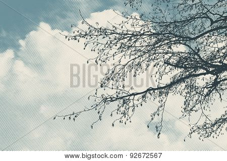 Tree branches over cloudy sky, vector