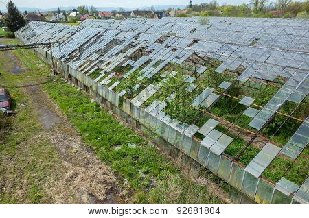 Destroyed Greenhouses