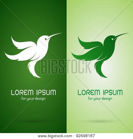 Vector Image Of An Hummingbird Design On Dark Green Background And Green Background, Logo, Symbol
