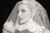 picture of bridal veil  - Duotone portrait of young beautiful blonde bride with bridal veil over her face - JPG