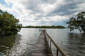 picture of jetties  - A fishing jetty going out on river with mangroves - JPG