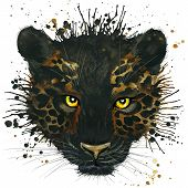 pic of panther  - Funny black panther - JPG