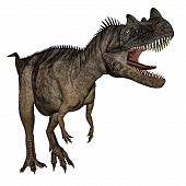 image of dinosaur  - Ceratosaurus dinosaur roaring isolated in white background  - JPG