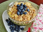 pic of cereal bowl  - A bowl of breakfast cereal topped with blueberries - JPG