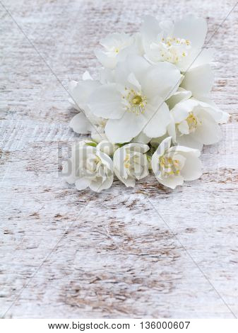 White English dogwood flowers bouquet on the wooden rustic background