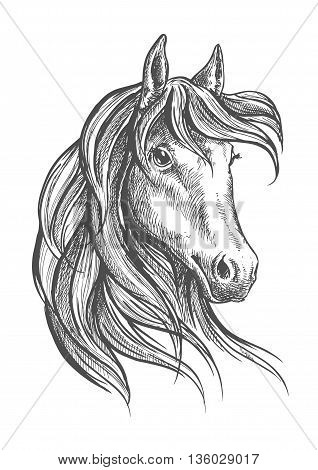 Engraving sketch of gorgeous and graceful arabian stallion head symbol with long wavy forelock. Great for equestrian sporting competition or horse breeding themes design