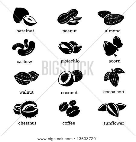 Nuts icons vector set. Food nut, organic nuts peanut almond and cashew, pistachio nut, ingredient nut walnut illustration