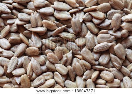 peeled sunflower seeds, sunflower seeds, sunflower seeds background. sunflower seeds photo, raw seeds