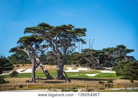 Montarey USA 19 June 2015: Pebble Beach Golf Course seen at 17 Mile Drive