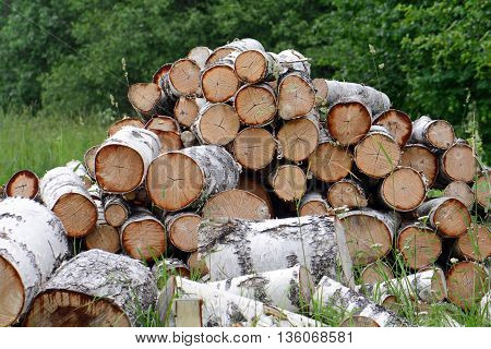 the pile of firewood prepared for splitting