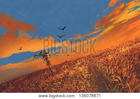 corn field with scarecrow and sunset sky, illustration painting