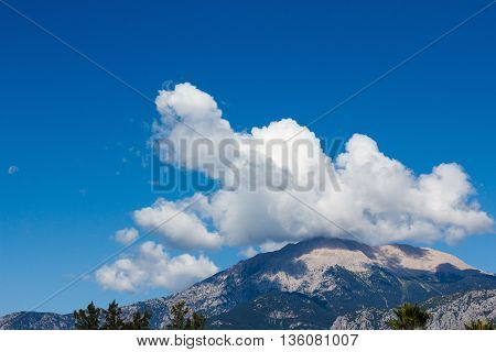 Top of a high mountain covered with vegetation in the cloud closeup
