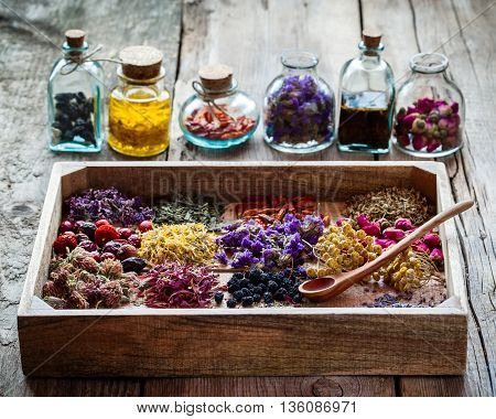 Healing Herbs In Wooden Box On Table And Bottles Of Tincture And Dry Healthy Tea, Herbal Medicine.