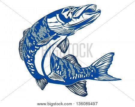 Pike Blue