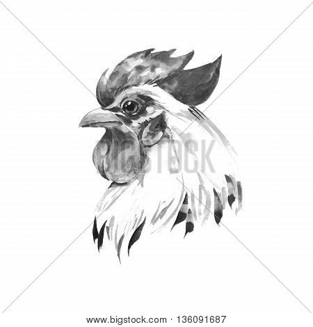 Rooster 2. Black and white illustration. Wastercolor sketch
