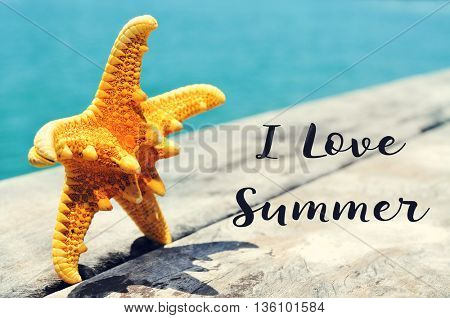 closeup of a yellow starfish on a weathered wooden pier with the ocean in the background and the text I love summer