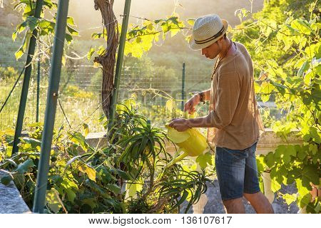 Side view of young stylish man watering plants in garden in sunlight