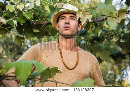 view of handsome young man in hat toching vine leaves in garden in sunlight