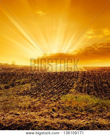 a cultivated field over sunset.