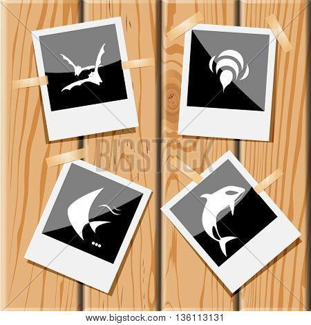 4 images: bats, bee, fish, killer whale. Animal set. Photo frames on wooden desk. Vector icons.