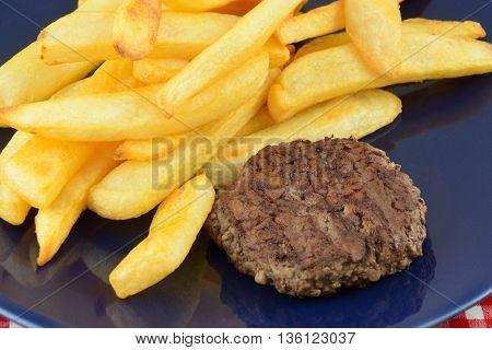 Hamburger and steak fries on blue plate