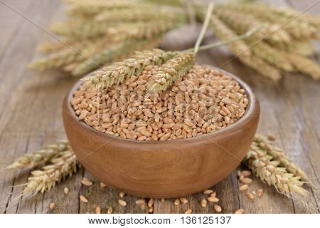 Wheat in bowl on wooden background close up