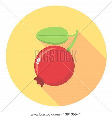 Cranberry Flat Icon