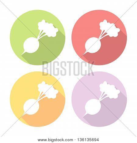 Radish Vegetable Flat Icons Set