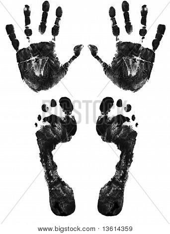 Hands And Feet Print