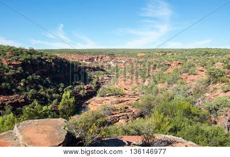 Elevated view of the scenic Murchison River Gorge with sandstone rock and native flora in the Z-bend landscape under a clear blue sky in Kalbarri National Park in Western Australia.