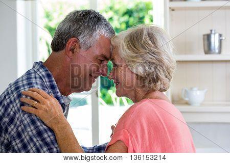 Romantic happy senior couple embracing at home