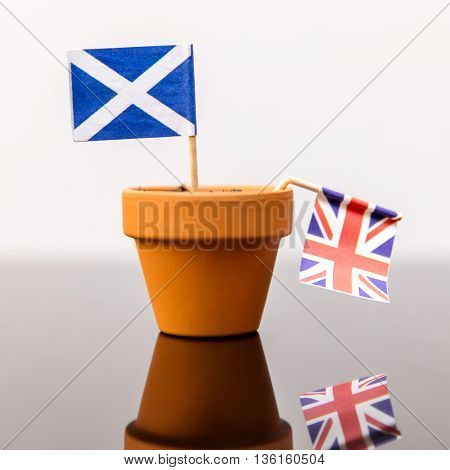 Plant Pot With Scottish And British Flag