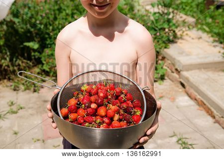 The boy holds a metal bowl with strawberries