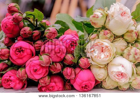 Closeup of pink peony and rose flowers