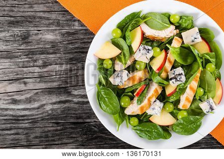 grilled chicken breast grapes spinach gorgonzola cheese and apple salad on a white dish on a table mat on dark wooden background view from above blank space left