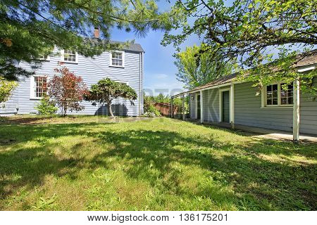 House Exterior. View Of Grassy Back Yard With Shed.