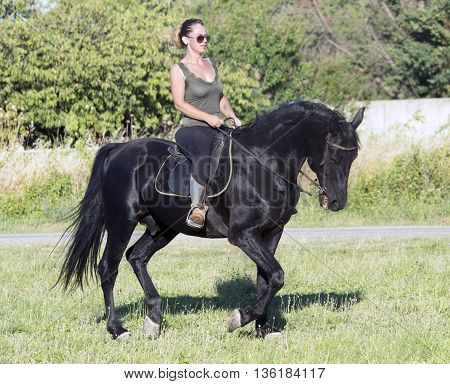 riding girl on a black stallion in nature