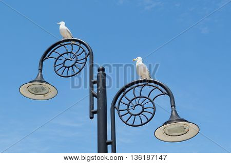 Ammonites shaped lamppost in Lyme Regis Dorset