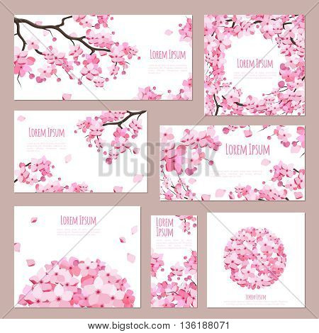 Greeting cards vector template with blossoming sakura on white