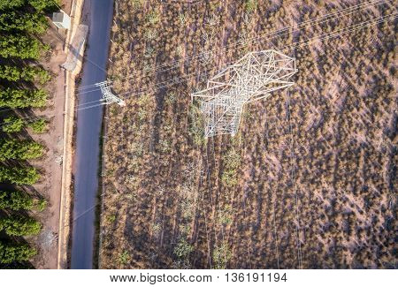 Top view of electrical tower over orange tree field