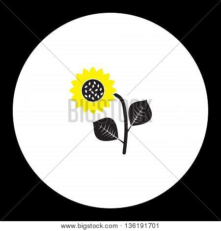 Black And Yellow Sunflower Isolated Black Icon Eps10