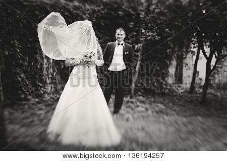 Wind Play With Veil Of Bride Background Groom