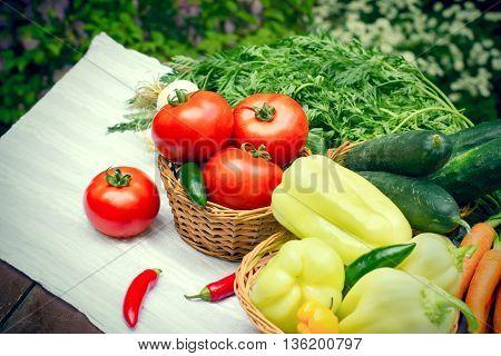 Seasonal fresh vegetable - eating healthy food