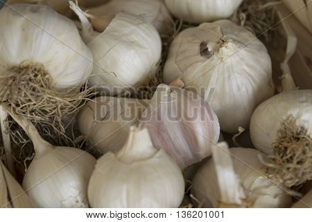 garlic in a basket on the kitchen table